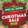 NEWSLETTER3 100x100 - Christmas Deal!!!